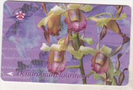 Singapore Old Phonecard - Dendrobium Taurinum -154SIGB - 10 $ - Singapour