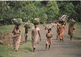 AFRIQUE -  COMORES - ANJOUAN - Retour Des Champs - Comores