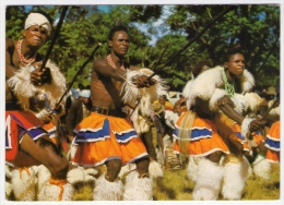 Postcard - Swaziland     (V 20979) - Swaziland