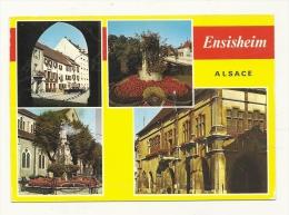 Cp, 68, Ensisheim, Multi-Vues, Voyagée 1986 - Autres Communes