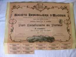 Société Immobilière D'Algérie 1899 - Afrique
