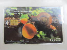 TOT Chip Phonecard,snail,used - Thaïlande