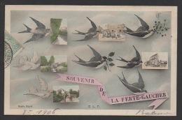 DF / SOUVENIR DE LA FERTÉ-GAUCHER / HIRONDELLES ET CARTES POSTALES ANCIENNES - Souvenir De...