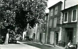 04 GREOULX-LES-BAINS  Hôtel Des Colonnes Et Avenue Des Marronniers - Gréoux-les-Bains