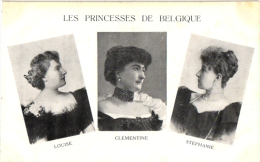 BELGIE DYNASTIE   5 CP   Princesses De Belgique  Chateau De Friedhem  Suède  Souvenir De Belg - Familles Royales