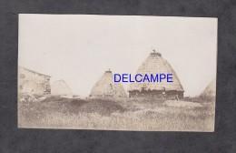 Photo Ancienne - Environs De MESSEJANA ? ( Freguesia ) - Palmeiros Des Veis - No Alemlejo - PORTUGAL - Non Classificati