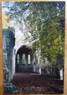 27 : Pont-Saint-Pierre Et Sa Région - Abbaye De Fontaine-Guérard à Douville - Art Et Photo - Plan Inhabituel - (n°1422) - France