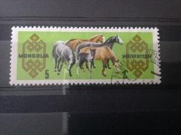 Mongolië - Paardenfokkerij 1965 - Mongolië