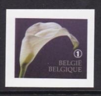 2013 - XX - 4368 - B 142 - Rouwzegel / Timbre De Deuil - Belgique
