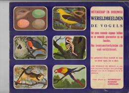 """Album Wereldbeelden """"De Vogels"""" Volledig - Sammelbilderalben & Katalogue"""