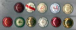 11 Plaques De Muselets Champagne - Collections