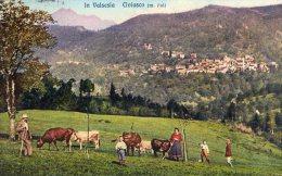 [DC6957] CIVIASCO (VERCELLI) - IN VALSESIA - PASCOLO - Viaggiata 1924 - Old Postcard - Vercelli