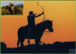 Voyo HORSE ISLANDER FLOKI  2001  Irene Hohe MINT Nr 48 - Chevaux