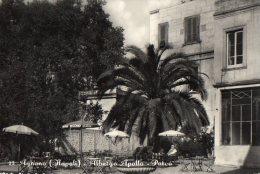 AGNANO 1953  (NAPOLI)  ALBERGO APOLLO - PARCO--C154 - Napoli (Naples)