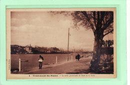 TRENTEMOULT-lès-NANTES (44) / SITES / La Belle Promenade Au Bord De La Loire / Animation - Francia