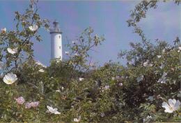 Vuurtoren/Leuchtturm/Lighthouse - Lange Erik, Öland  – Ongebruikt - Vuurtorens
