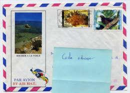 Nlle CALEDONIE--1988--Lettre De Nouméa Pour La France(Orvault-44)-Composition De Tp Sur Enveloppe Illustrée---Anse VATA - Briefe U. Dokumente