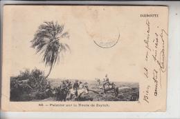 DSCHIBUTI / DJIBOUTI, Palmier Sur La Route De Zeylah, 1903 - Dschibuti