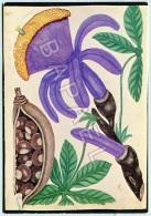 Planche De Colporteur - Marronnier D´Amérique - Musée Dauphinois - Photo Bernard Roche (Recto-Verso) - Fleurs, Plantes & Arbres