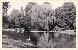 AZE19 - Parc De Woluwe, Papeterie F. Lambert Woluwe-Saint-Pierre - Woluwe-St-Pierre - St-Pieters-Woluwe