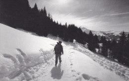Ph-CPM Facteur De Montagne Dans La Neige (France) Photo Raymond Depardon - Poste & Facteurs