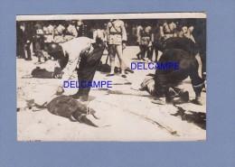 Photo Ancienne - CHINE - Le Ramassage Des Corps Aprés Plusieurs éxécutions - 1920 / 1930 - Mort - Guerre, Militaire