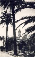 Hyeres Les Palmiers - 2 Scans - Frankreich