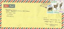 Ethiopia 2005 Merawi Postal Agent Antilope Cover - Ethiopië