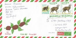 Ethiopia 2005 Areka Postal Agent Antilope Cover - Ethiopië