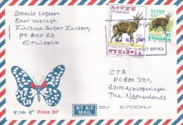 Ethiopia 2004 Fincha No. 2 Postal Agent Antilope Cover - Ethiopië