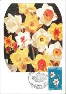 CM Andorre - Série Des Fleurs - 1974 - Bouquet De Narcisses - Maximumkarten (MC)