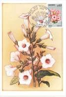 CM Andorre - Série Des Fleurs - 1974 - Fleurs De Tabac - Maximumkarten (MC)