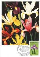 CM Andorre - Série Des Fleurs - 1974 - Bouquet D'iris - Maximumkarten (MC)