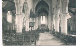 Denderleeuw, Binnenste Der Kerk - Denderleeuw