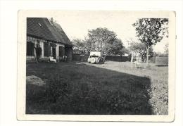 Photo, Automobile - Cars