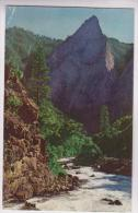 CPA KING S CANYON - Kings Canyon