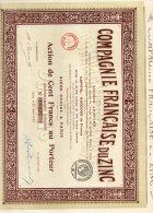 Compagnie Française Du Zinc - Action De Cent Francs Au Poteur - Du 25 Avril 1919 - - Industrie