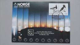Norwegen 883/4 Yt 1031/4 Maximumkarte MK/MC, SST HAMBURG 1984, Vögel - Cartes-maximum (CM)