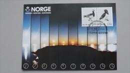 Norwegen 883/4 Yt 1031/4 Maximumkarte MK/MC, SST JONKÖPING 1984, Vögel - Cartes-maximum (CM)