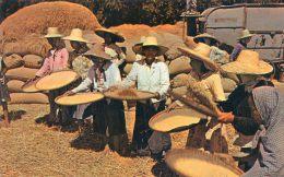 Rice Winnowers - The Cleaners That Accompany The Rice Treshing Machine - Philippines