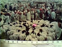 ARABIA SAUDITA - K.S.A. - THE SACRIFICE AT MINA N1982  EI3946 - Arabia Saudita