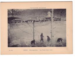 Berne, Bärengraben, La Fosse Aux Ours Photo CPN 9 X 14 Sur Carton 13 X18 (1642) - Lieux