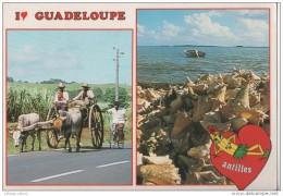 MULTIVUE ° GUADELOUPE  ANTILLES °  977 GOZIER  LE 8 12 1988 - Guadeloupe