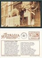 Postcard Elephant Natural History Museum South Kensington London 1930s Nostalgia Repro - Elephants