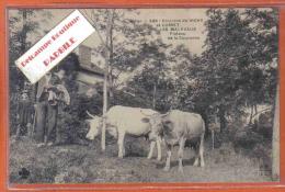 Carte Postale 03. Env. Vichy Cusset Les Malavaux Plateau De La Couronne  Attelage De Boeufs Trés Beau Plan - Frankrijk