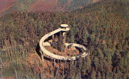 Eagle Eye View, Clingman's Dome - Etats-Unis