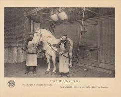Planche Brasserie Wielemans Ceuppens Bruxelles Bière Brasserie Toilette Des Chavaux - Other Collections