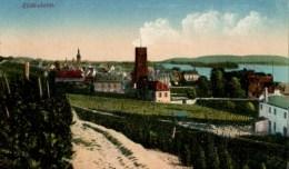 RHEINGAU    Rudesheim Carte En Bon état  écrite - Rheingau