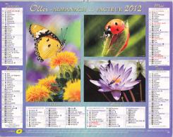 Almanach Du Facteur 2012 - Insectes Papillons Coccinelles Libellules - Saône Et Loire 2012 - Calendriers