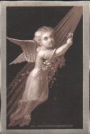 Chromo ARGENTE  -  ANGELOT, ANGE, Fleurs - RARE - Cromos